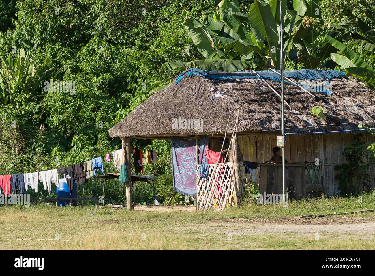Giugno 6, 2017 Misahualli, Ecuador: piccola dimora baracche di legno tavole nell'area amazzonica Immagini Stock
