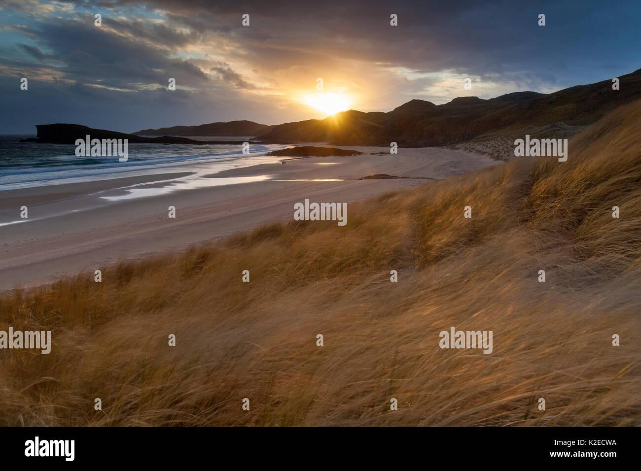 Oldshoremore spiaggia e dune nella luce della sera, Kinlochbervie, Sutherland, Scozia, aprile 2014. Foto Stock