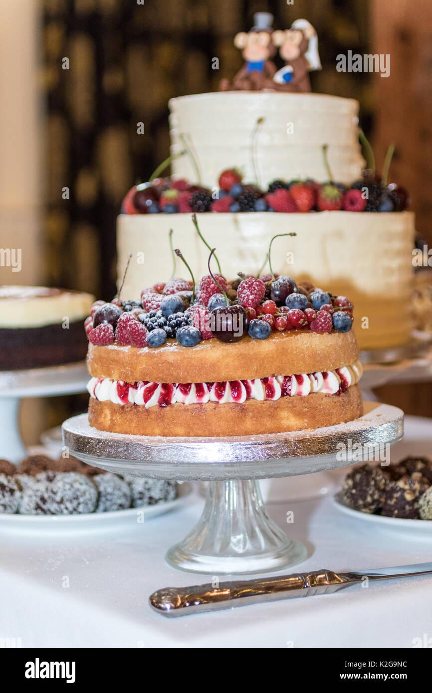 Giorno di nozze che mostra immagini - amore, matrimonio, fiori, dolci e fiori Immagini Stock