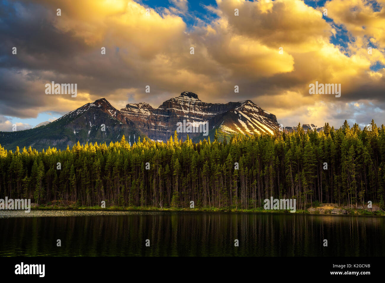 Scenic Sunset over deep forest lungo il lago di Herbert nel Parco Nazionale di Banff, con cime innevate della Canadian Rocky Mountains in background. Immagini Stock