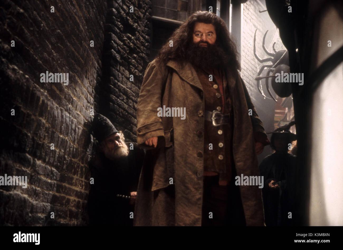 Harry Potter Camera Dei Segreti : Scopri le curiositÀ su harry potter e la camera dei segreti