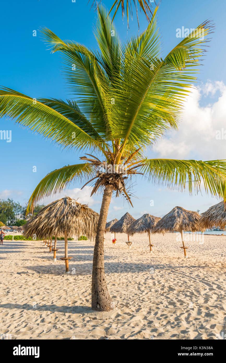 Bavaro Beach, Bavaro, Higuey, Punta Cana, Repubblica Dominicana. Immagini Stock