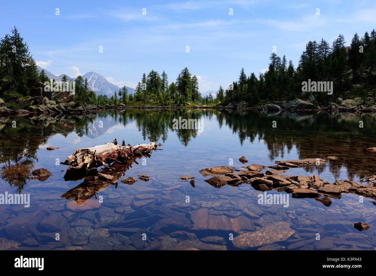 Sul Lago Grande tra Laguzzolo e Alpe Lendine, Valle del Drogo, valchiavenna, Sondrio, Lombardia, Italia Foto Stock