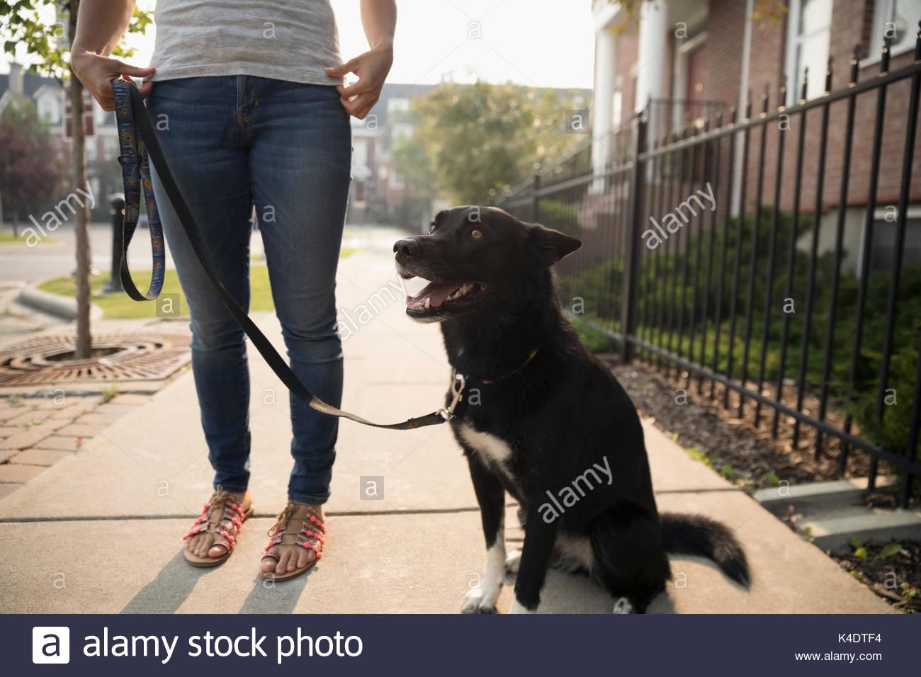 Donna con cane al guinzaglio sul marciapiede Immagini Stock