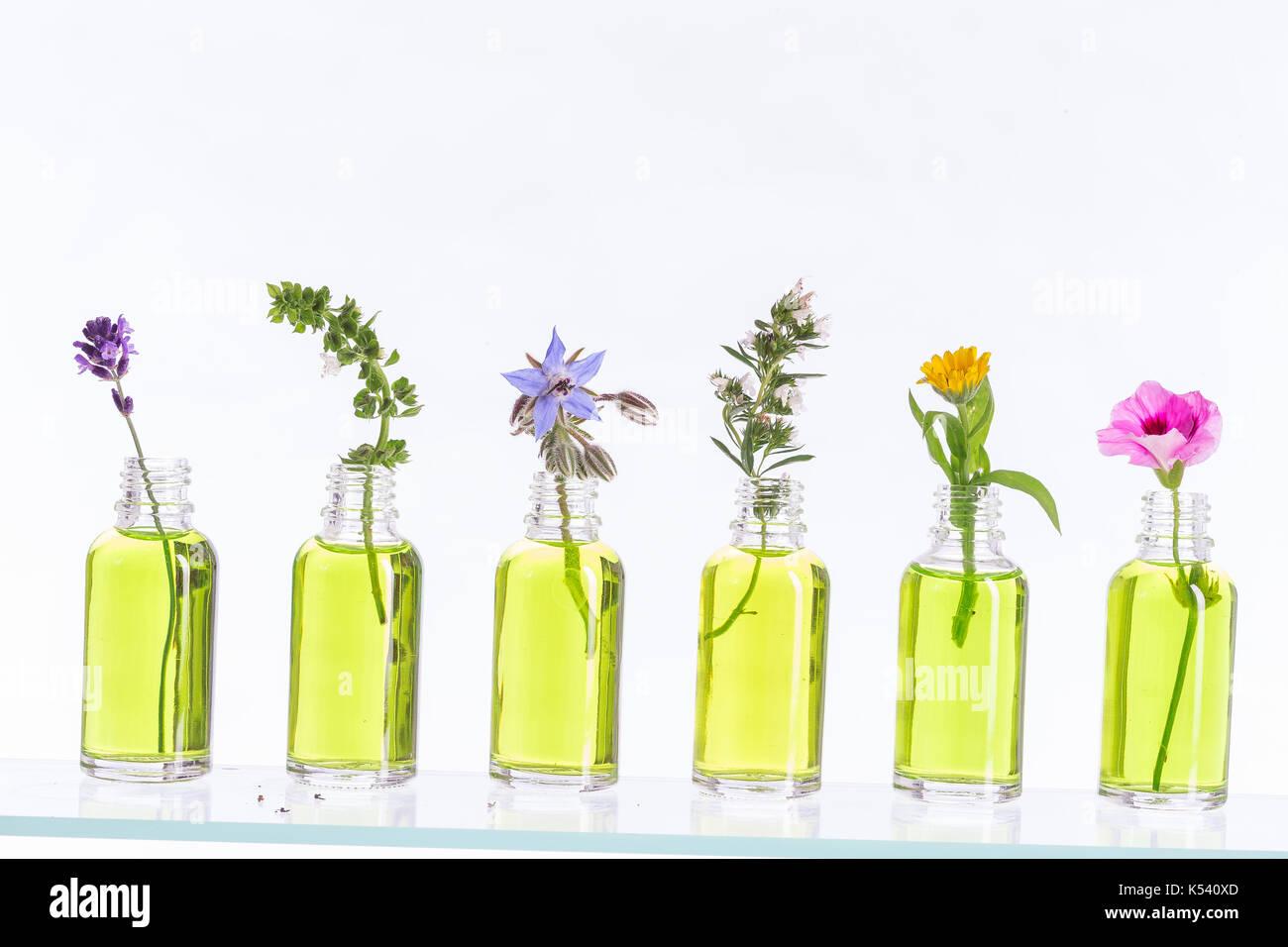 Bottiglia Di Olio Essenziale Con Erbe H Mint Impostato Su Sfondo