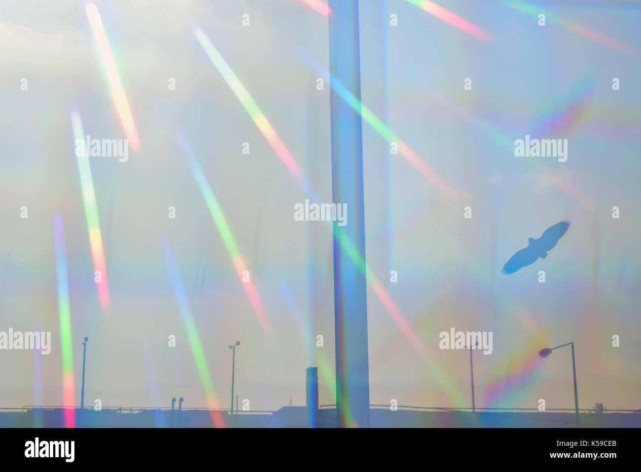 Prismatica raggi di sole sulla barriera di vetro con volo di uccelli silhouette. autostrada distanti e luci di strada. Immagini Stock