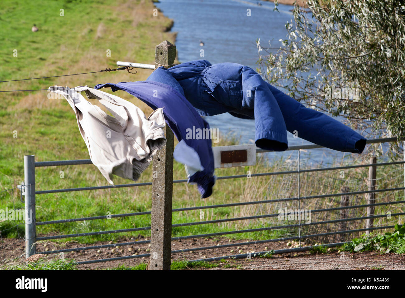 Rurale scena della complessiva e il pantalone al vento Immagini Stock