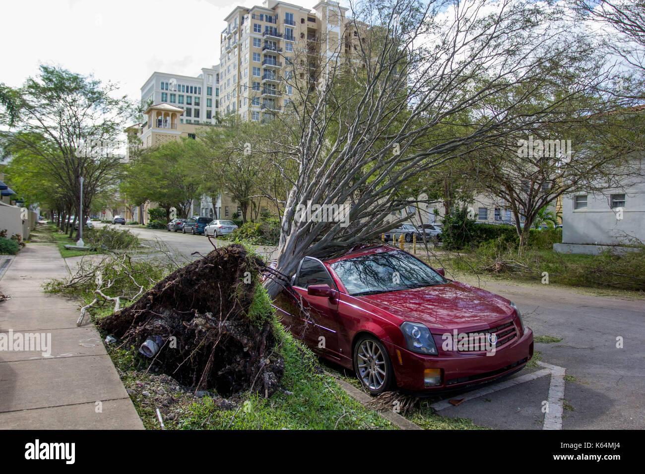 Miami, Florida, Stati Uniti d'America. Undicesimo Sep, 2017. Un auto è schiacciata sotto un albero sradicato seguenti Foto Stock