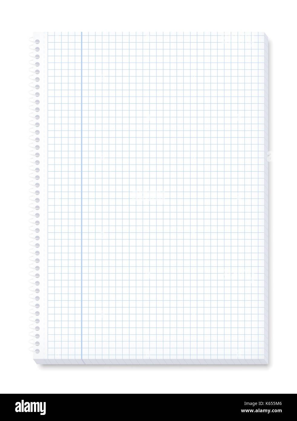 Blocco Note Con Pagine A Quadretti Per Matematica Margine Per Le