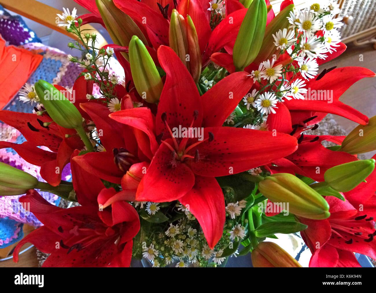 Bouquet Di Fiori Belli Gigli Rossi Foto Immagine Stock