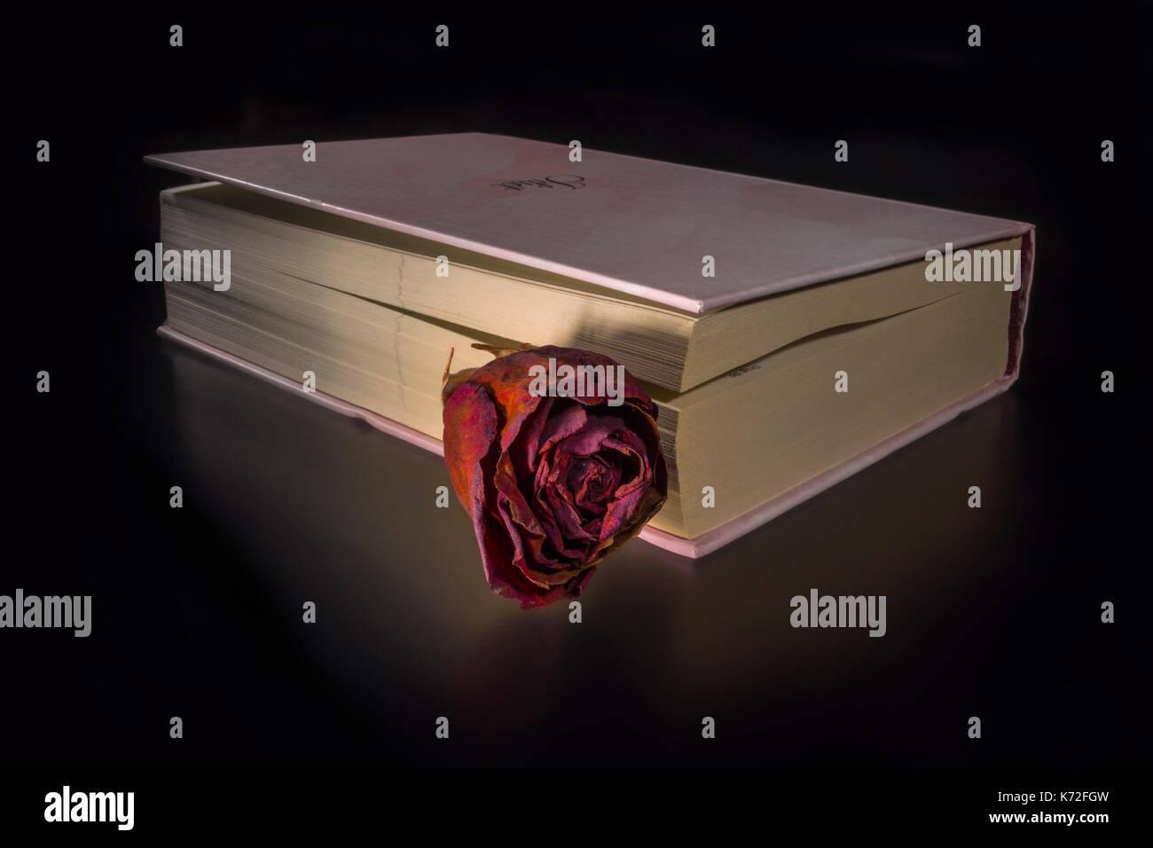 Prenota Con Una Rosa Su Sfondo Nero Foto Immagine Stock 159252041