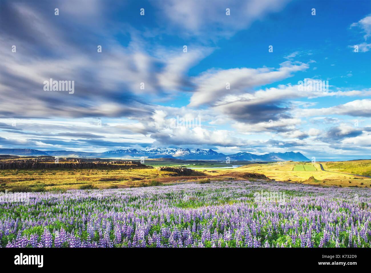 Pittoresche vedute del fiume e le montagne in Islanda Immagini Stock