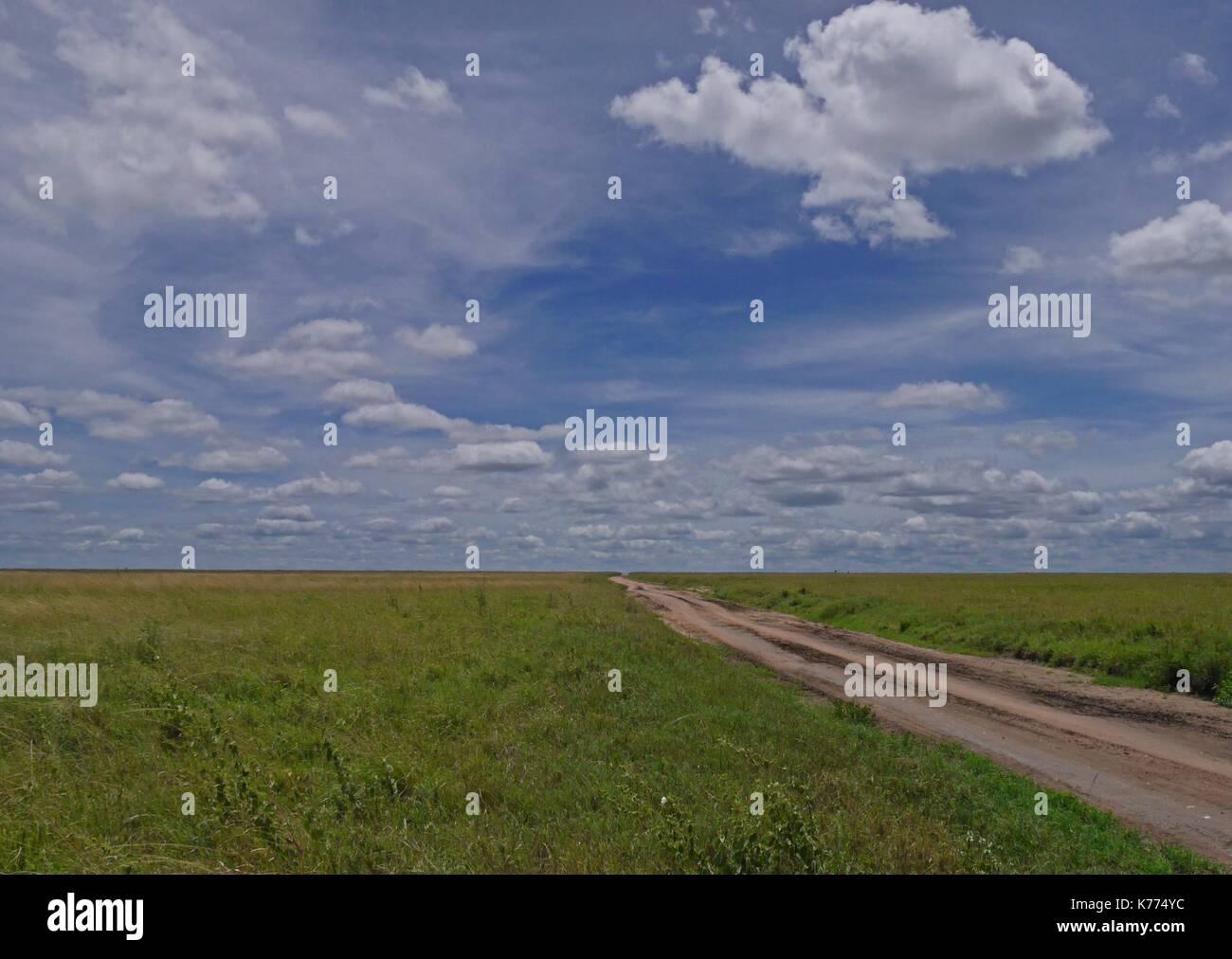 Una pista sterrata conduce nelle vaste pianure del Serengeti National Park, Tanzania Immagini Stock