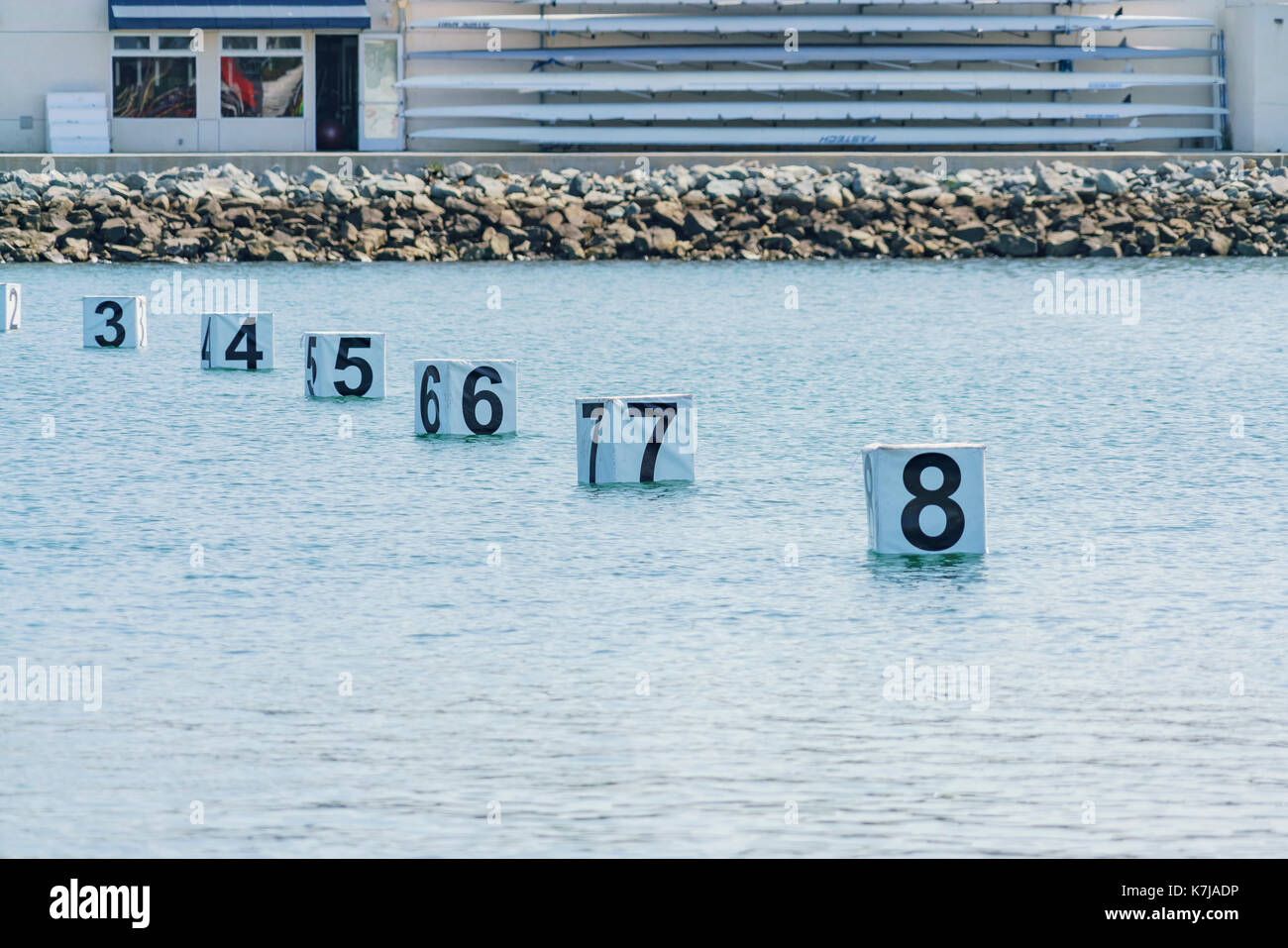 Concorrenza dragonboat traguardo a Long Beach, California, U.S.A. Immagini Stock
