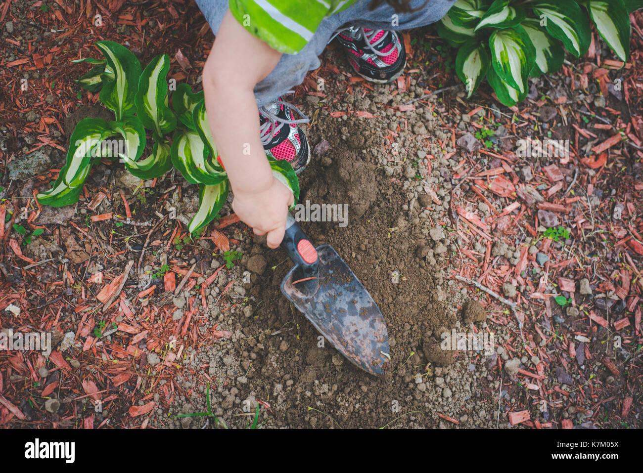 Una bambina scava con una vanga in un giardino. Immagini Stock