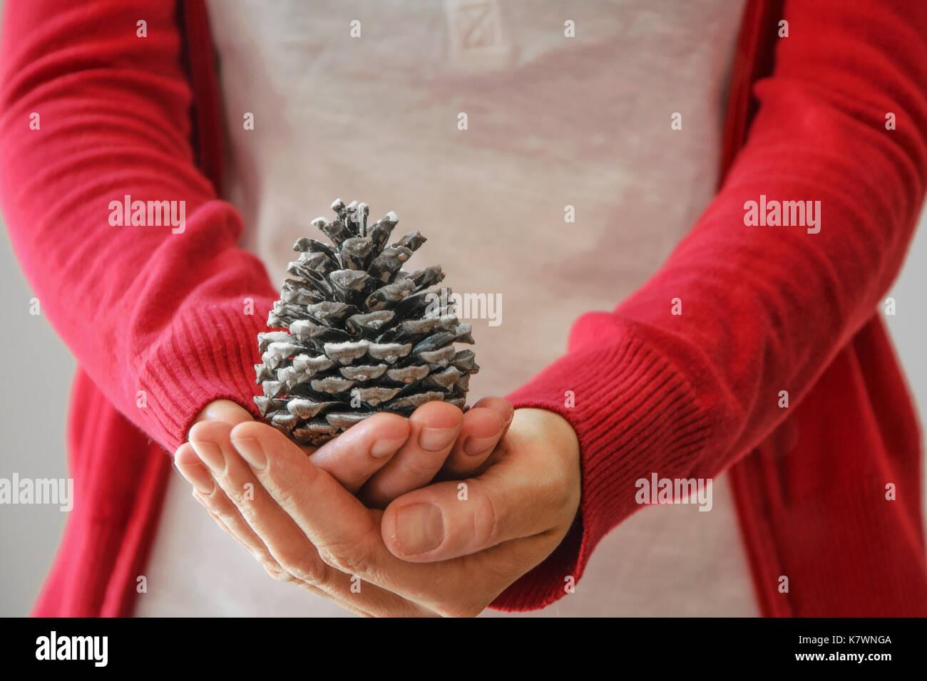 La donna tiene il cono di pino Foto Stock