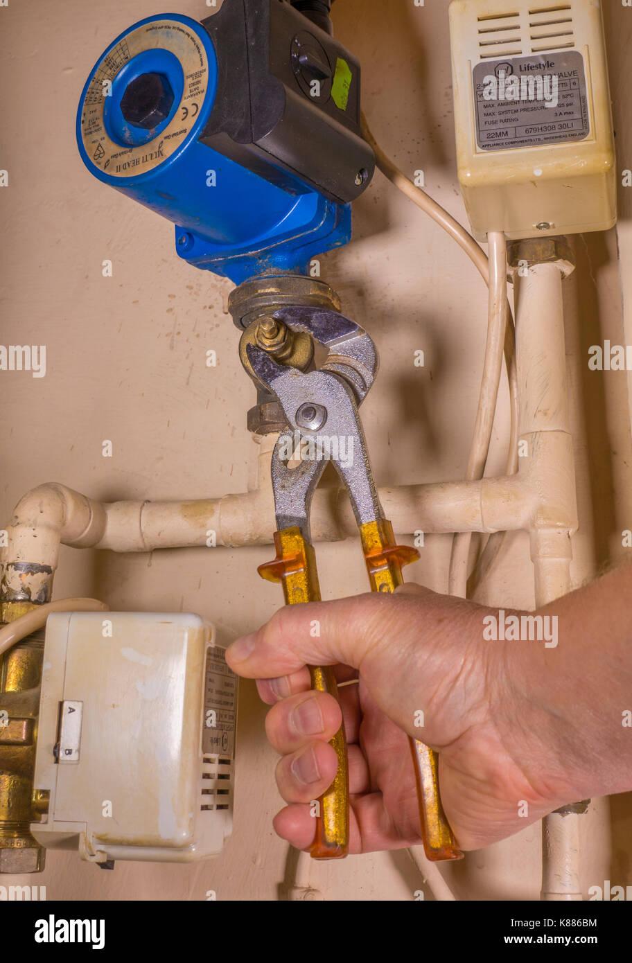 Un idraulico funzionante in un armadio di aerazione, utilizzando una chiave regolabile per lavorare su un difetto di riscaldamento centrale della pompa. Inghilterra, Regno Unito. Immagini Stock
