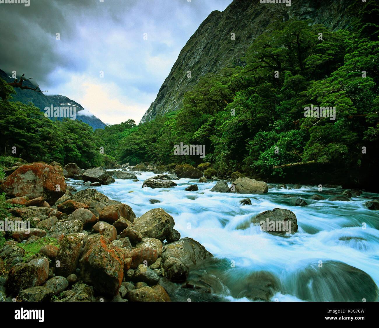 Nuova Zelanda. Milford Sound. veloce flusso di esecuzione. Immagini Stock
