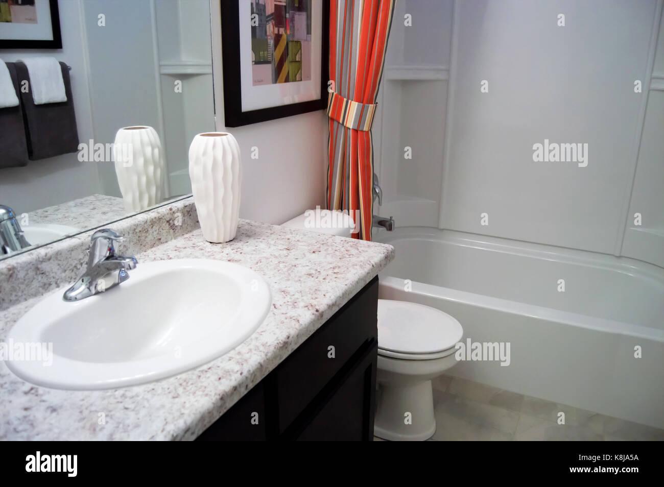 Tende Da Doccia Design : Una piccola stanza da bagno con un bancone di marmo e un