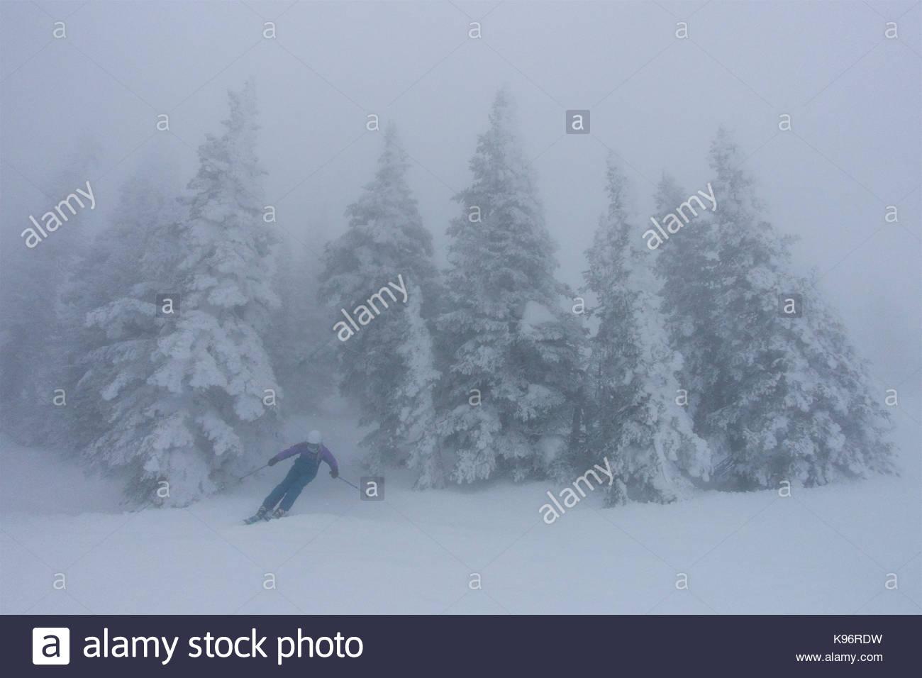 Una ragazza teen sciare nella nebbia, whiteout condizioni nei pressi di rime coperti di conifere. Immagini Stock