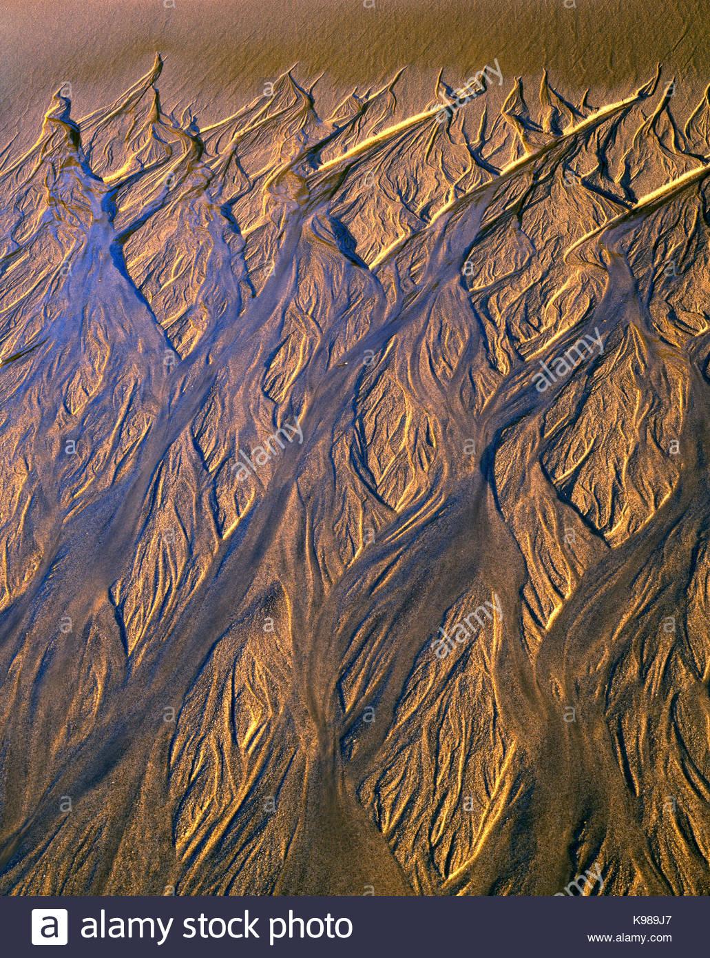 La luce del tramonto sulla sabbia motivo lasciato dalla marea sfuggente, Phillip Burton deserto, Point Reyes National Immagini Stock