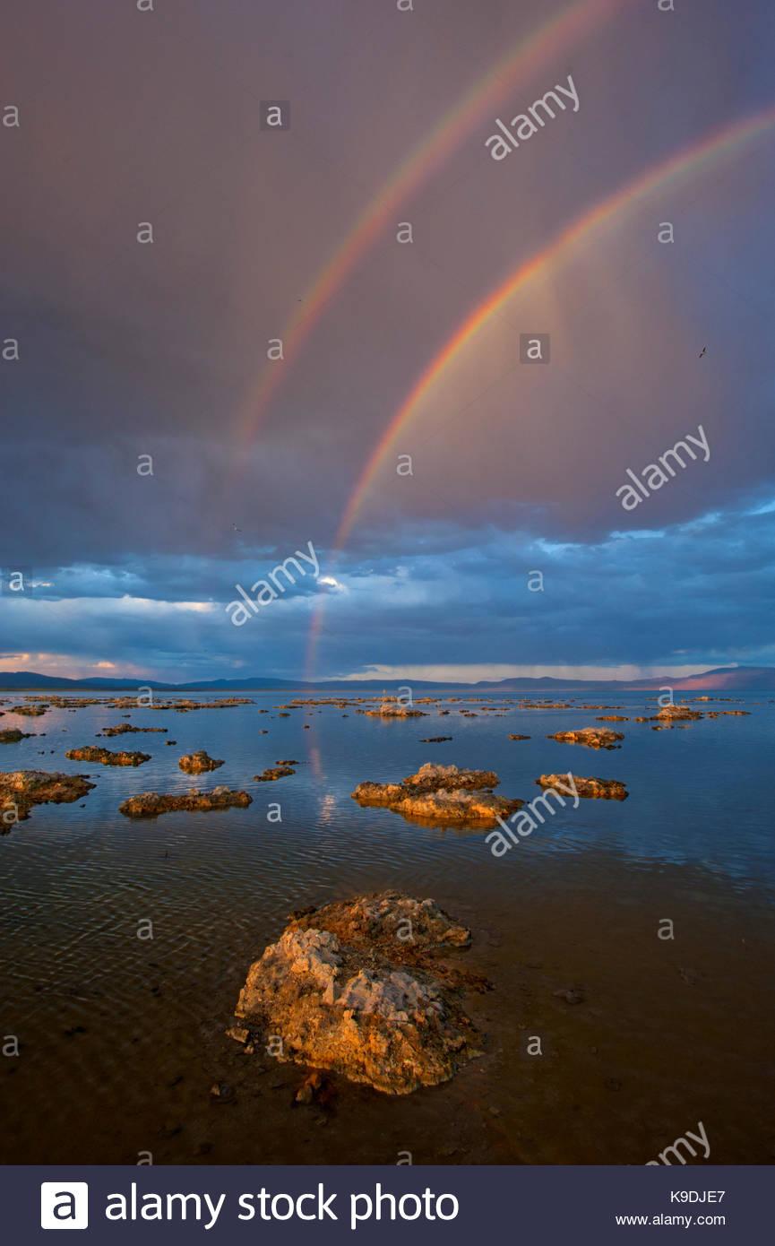 Doppio arcobaleno e passaggio di tempesta al tramonto, Mono Basin National Forest Scenic Area, California Immagini Stock