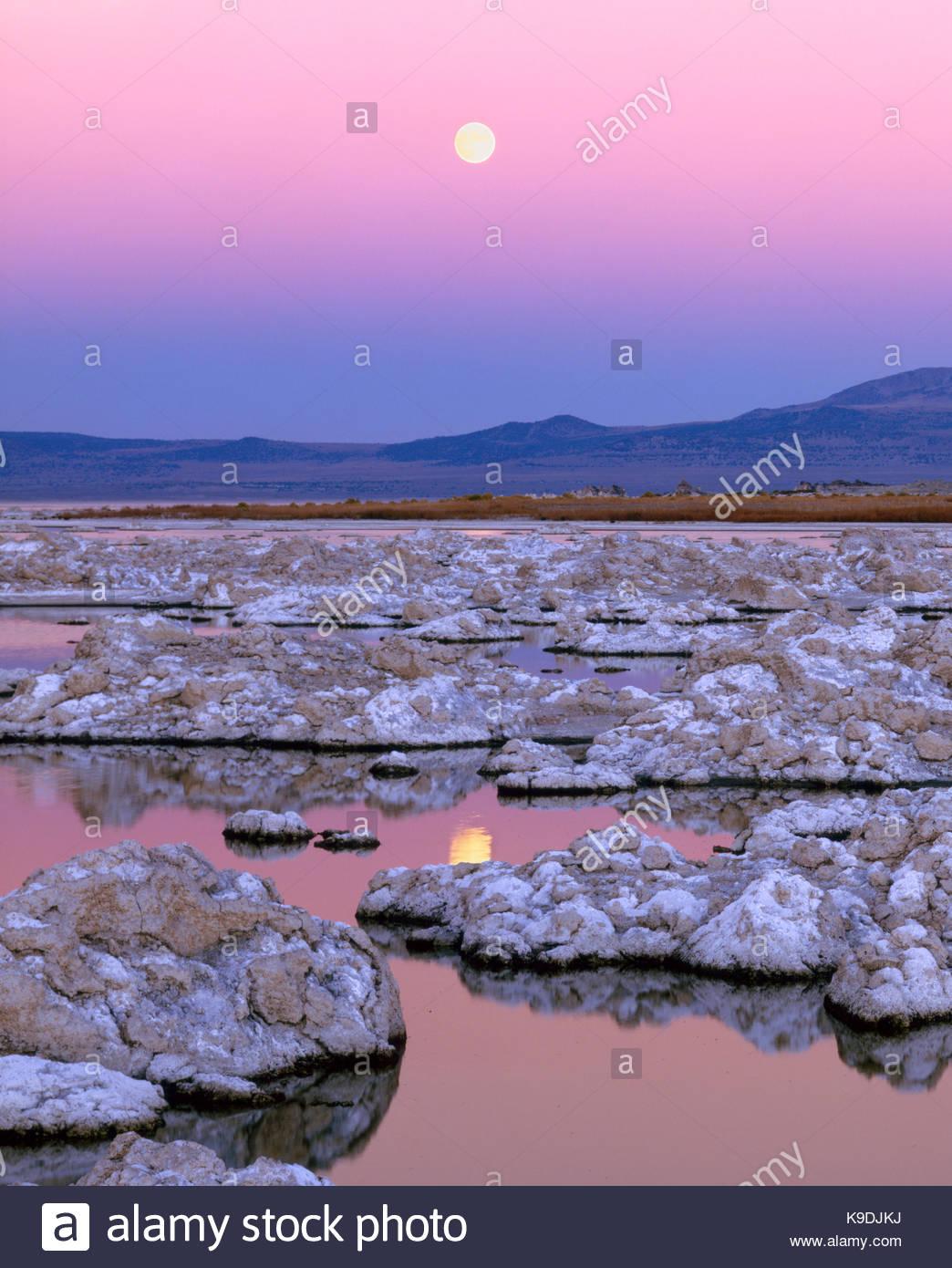 Rising Moonover Mono Lago,Mono Basin National Forest Scenic Area, CA Immagini Stock