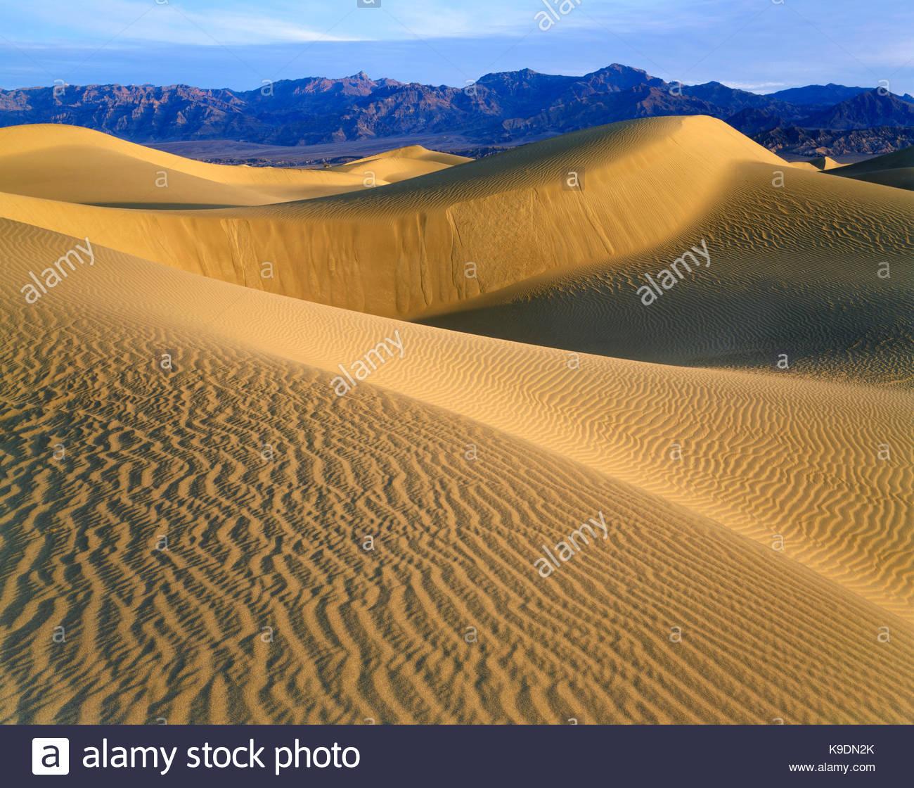 Le dune di sabbia vicino a Mesquite Flat, Parco Nazionale della Valle della Morte, California Immagini Stock