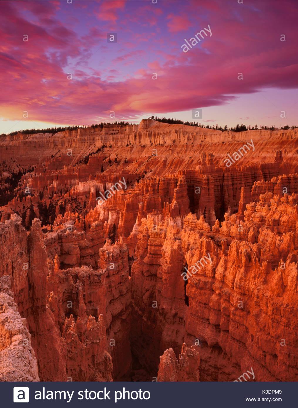 Alba al tramonto punto, Parco Nazionale di Bryce Canyon, Utah Immagini Stock