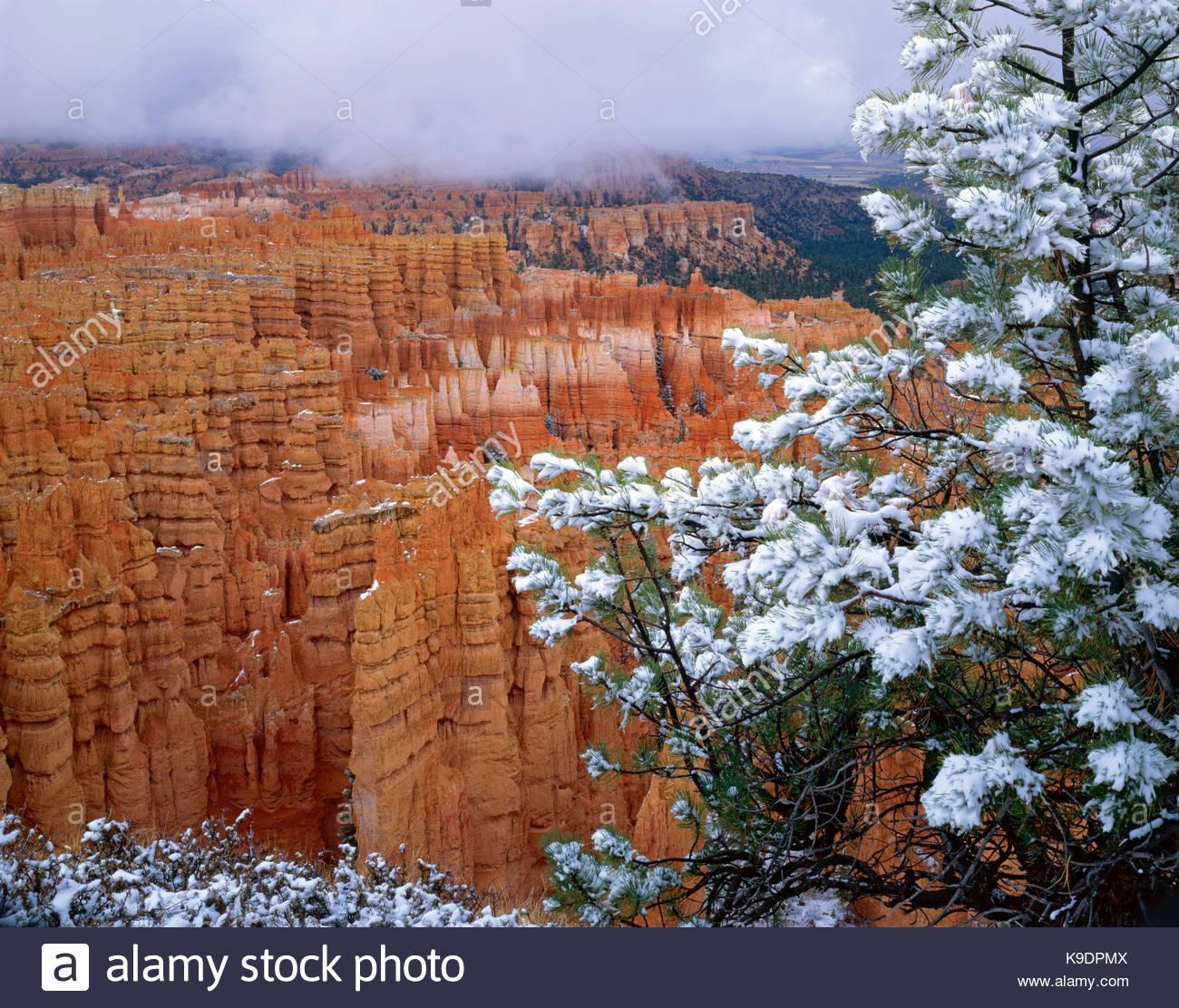Tempesta su città silenziosa, Parco Nazionale di Bryce Canyon, Utah Immagini Stock