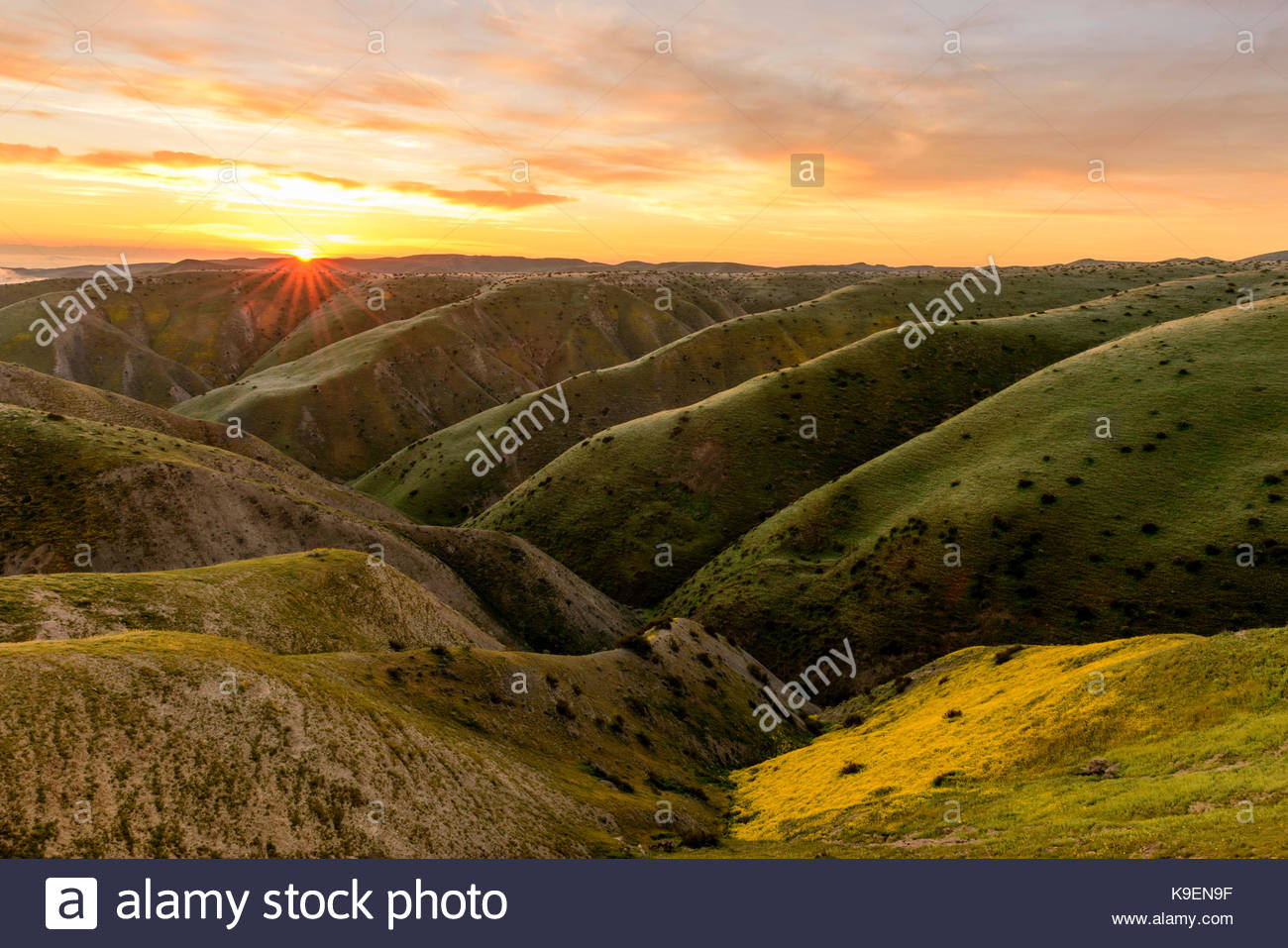 Colline Panoche Wilderness Area studio all'alba, Fresno County, California Immagini Stock
