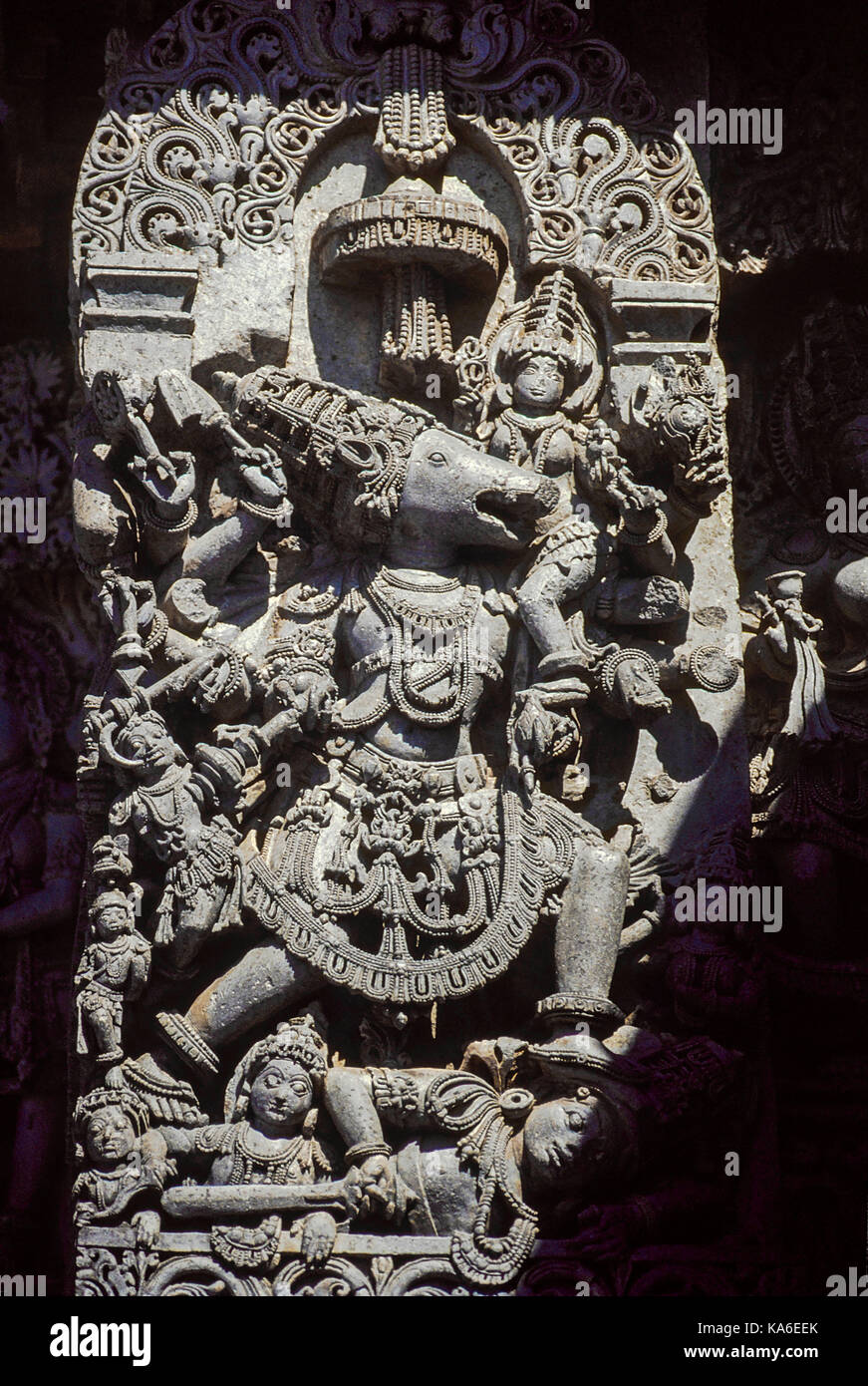 Varaha avatar scultura su parete, halebidu, Karnataka, India, Asia Immagini Stock