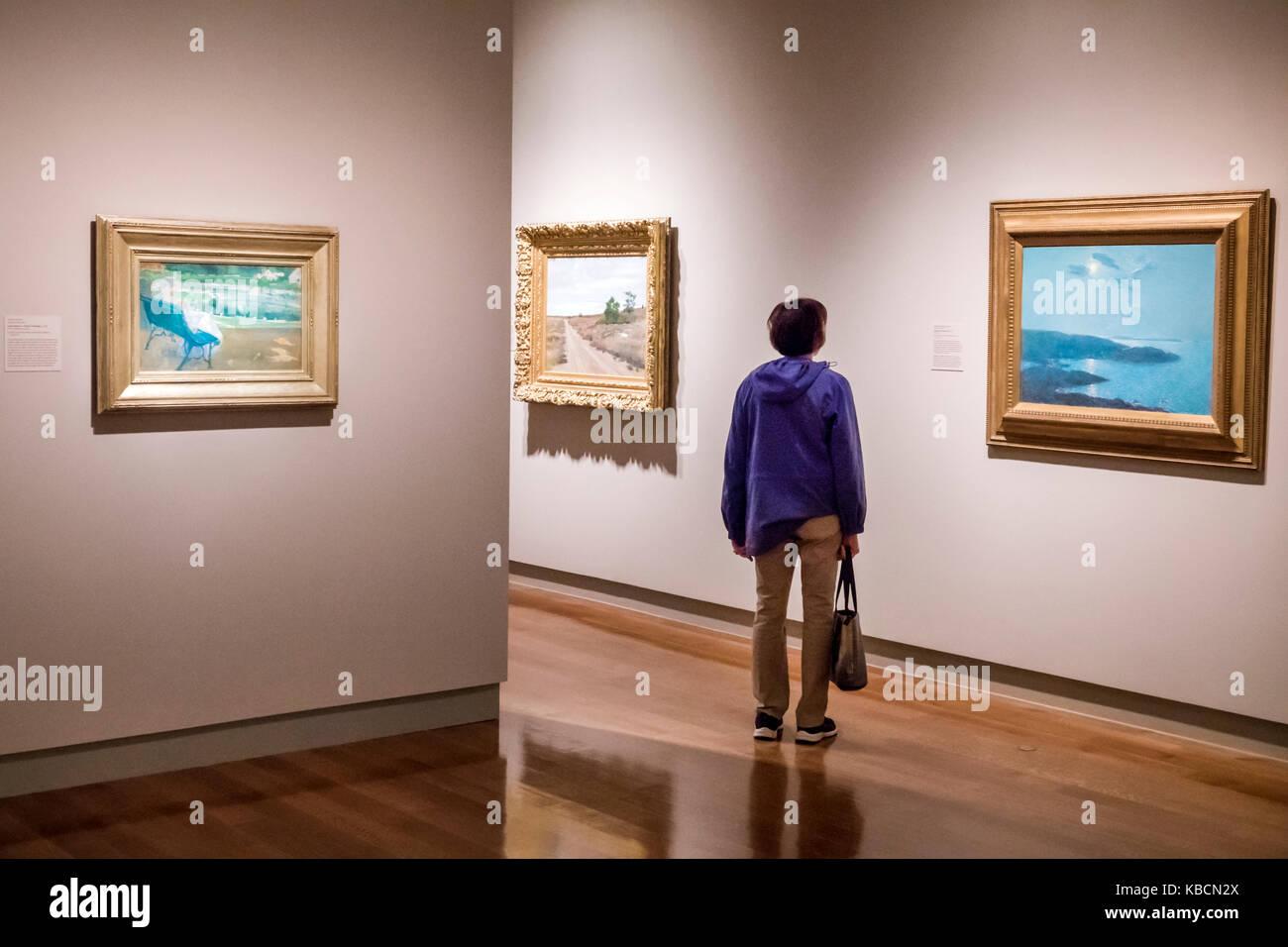 Richmond Virginia Virginia il Museo delle Belle Arti VMFA McGlothlin Collezione di Arte Americana Impressionismo Immagini Stock
