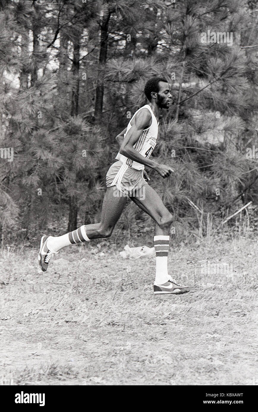 Runner competere nel 1979 aau cross country Championships. Immagini Stock