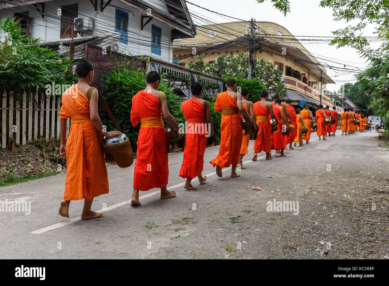 I monaci buddisti in una linea a Luang Prabang, Laos Immagini Stock
