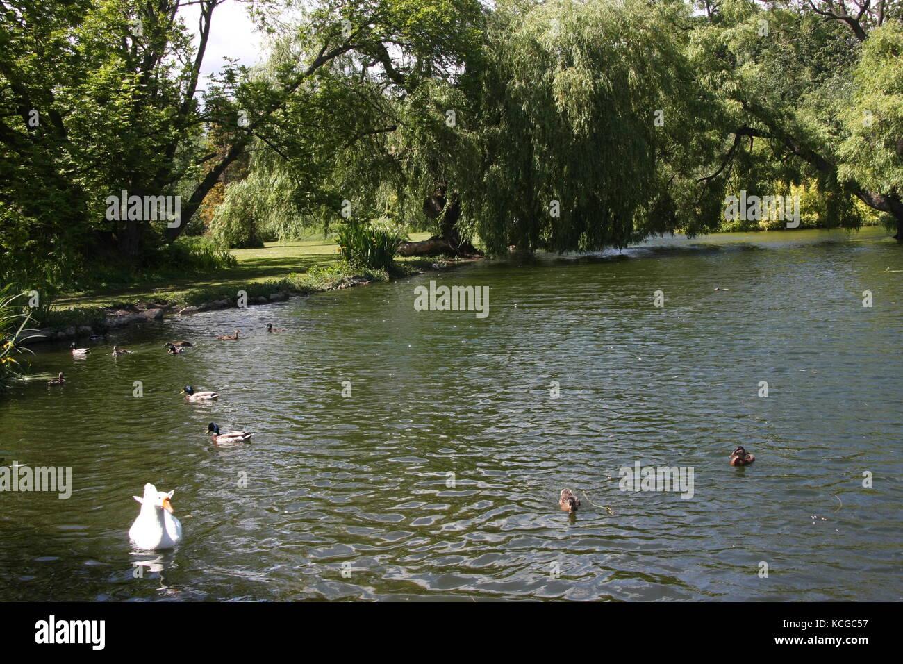 Thwaite Hall Gardens vista a Cottingham, East Yorkshire Foto Stock