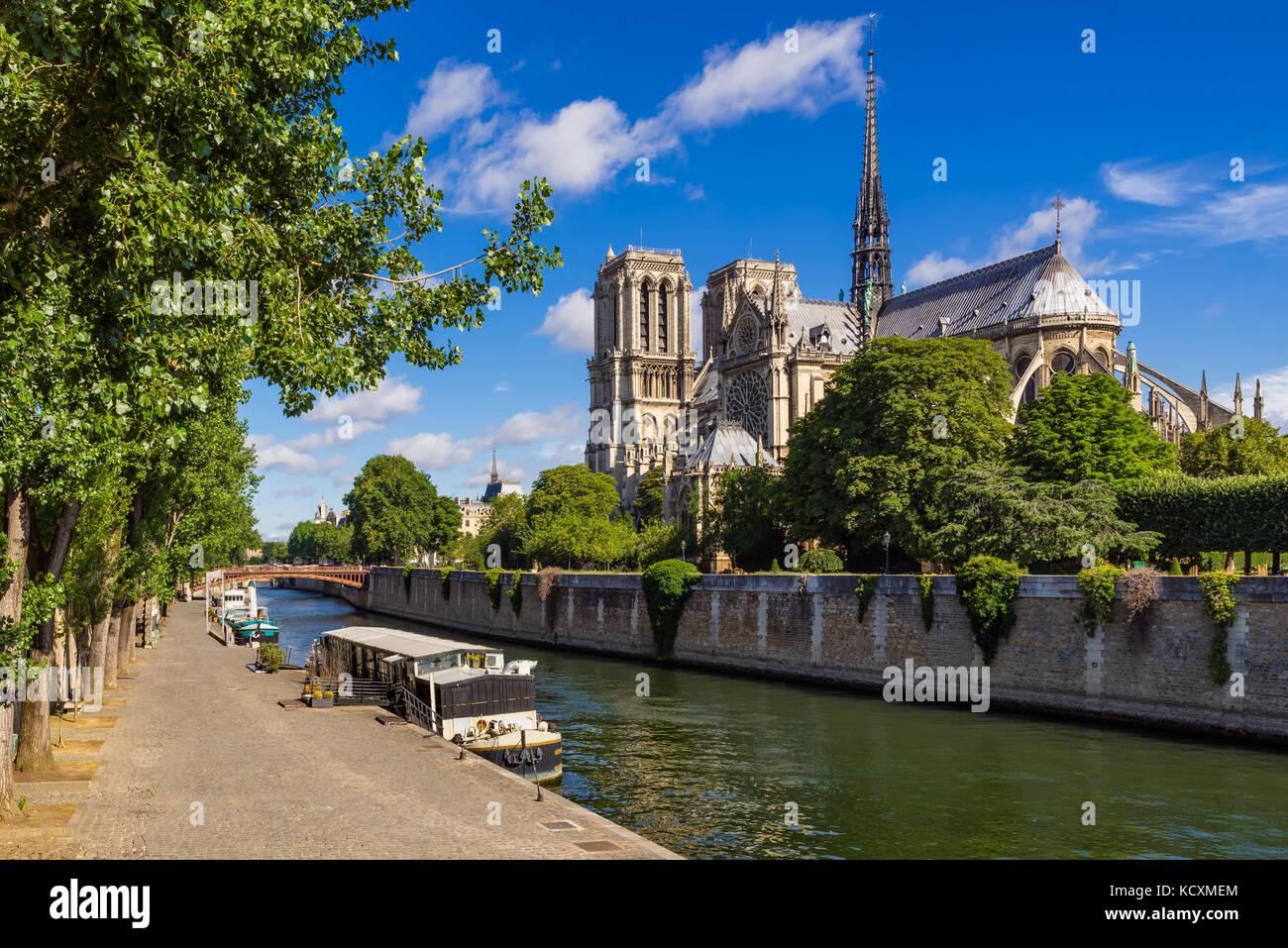 Cattedrale di Notre Dame de Paris con il fiume Senna in estate. Parigi, Francia Immagini Stock