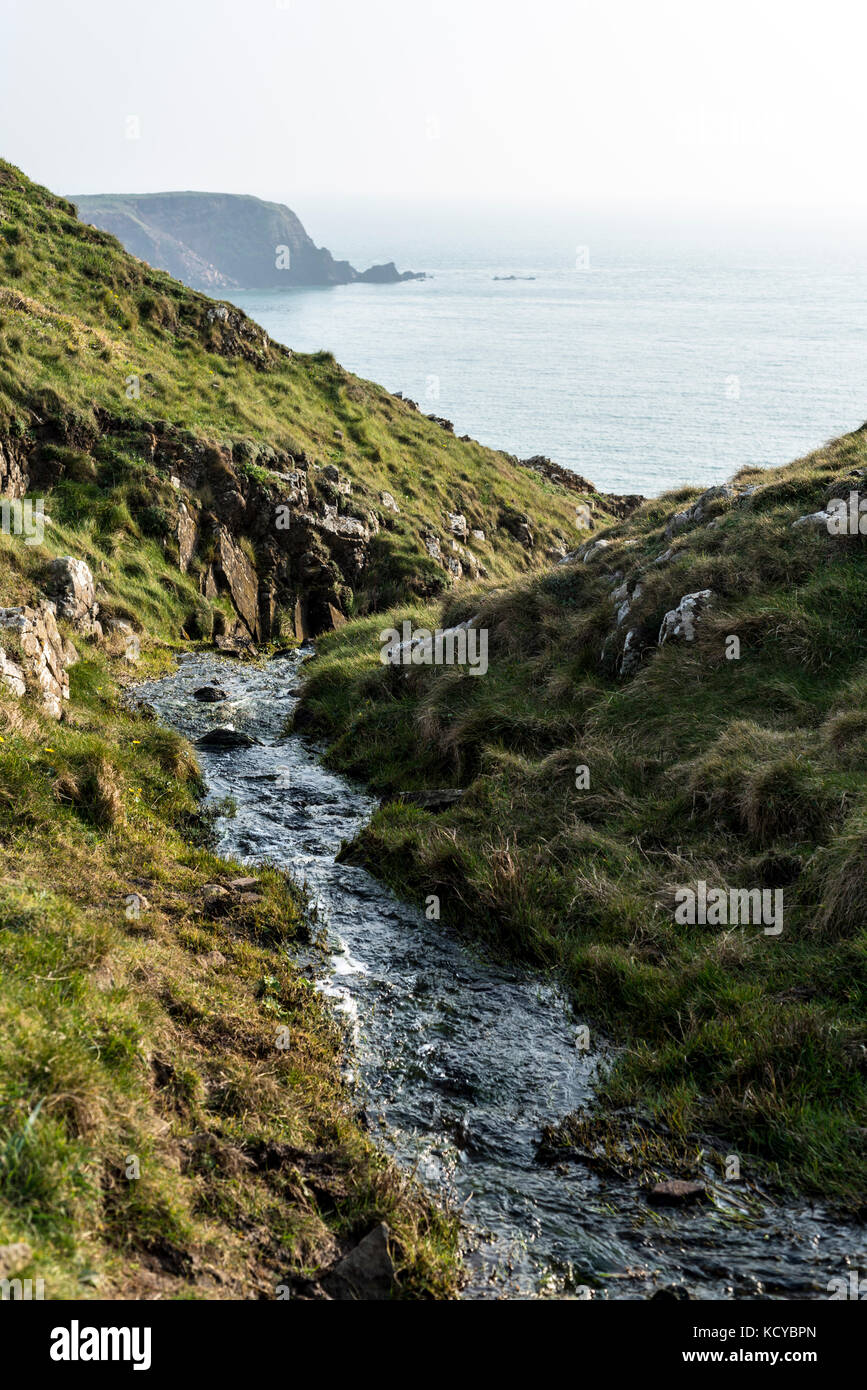 Un piccolo ruscello che scorre verso il mare, Pembrokeshire, Regno Unito Immagini Stock