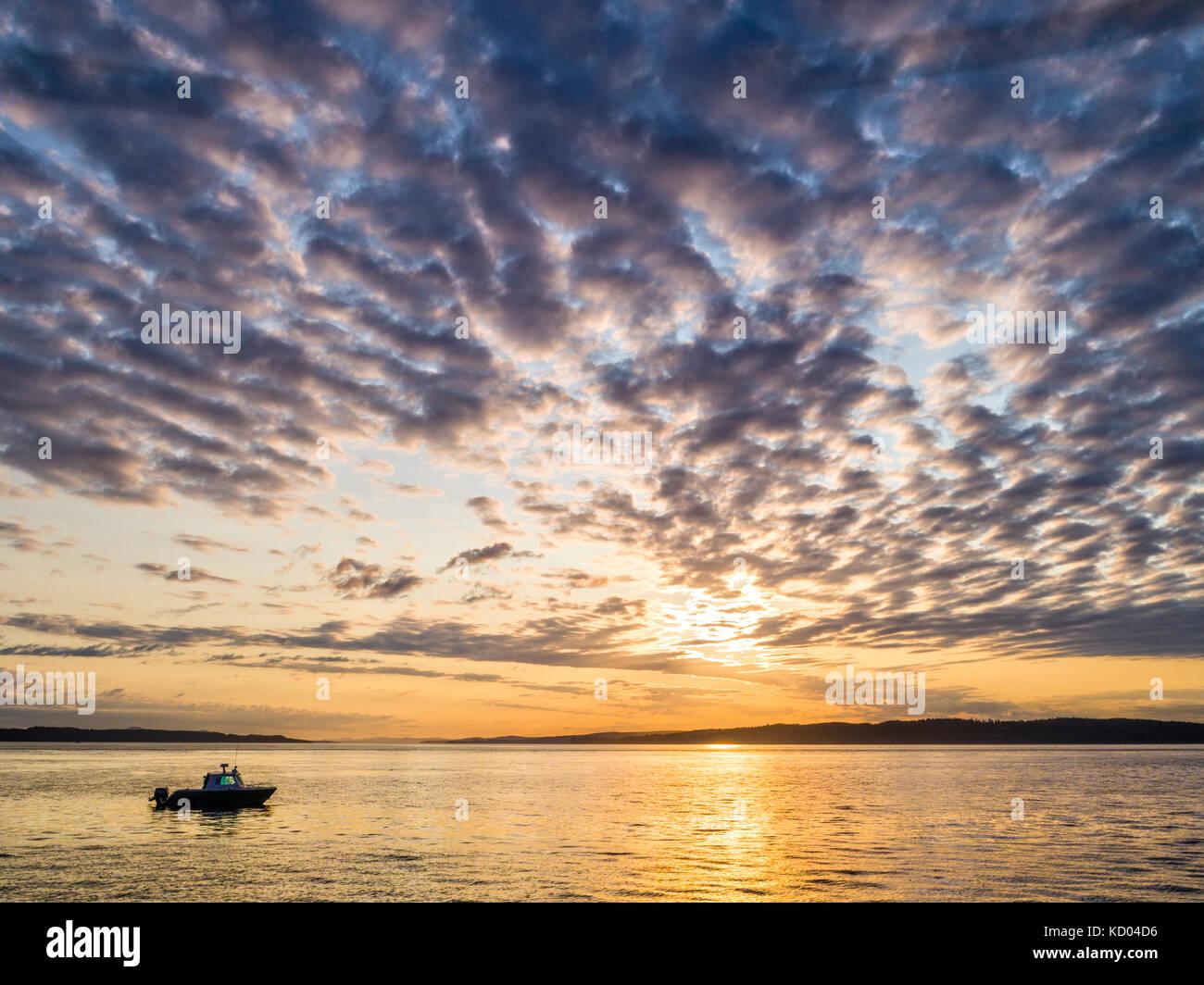 """Il 'luce ambiente """" tour in barca (Isola di Vancouver tour foto) durante il tour al tramonto nel passaggio Immagini Stock"""