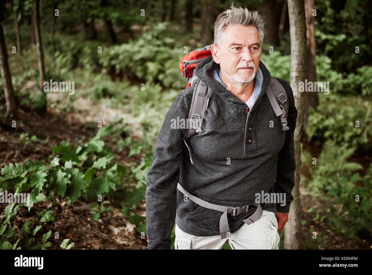 Senior escursionismo uomo attraverso la foresta Immagini Stock