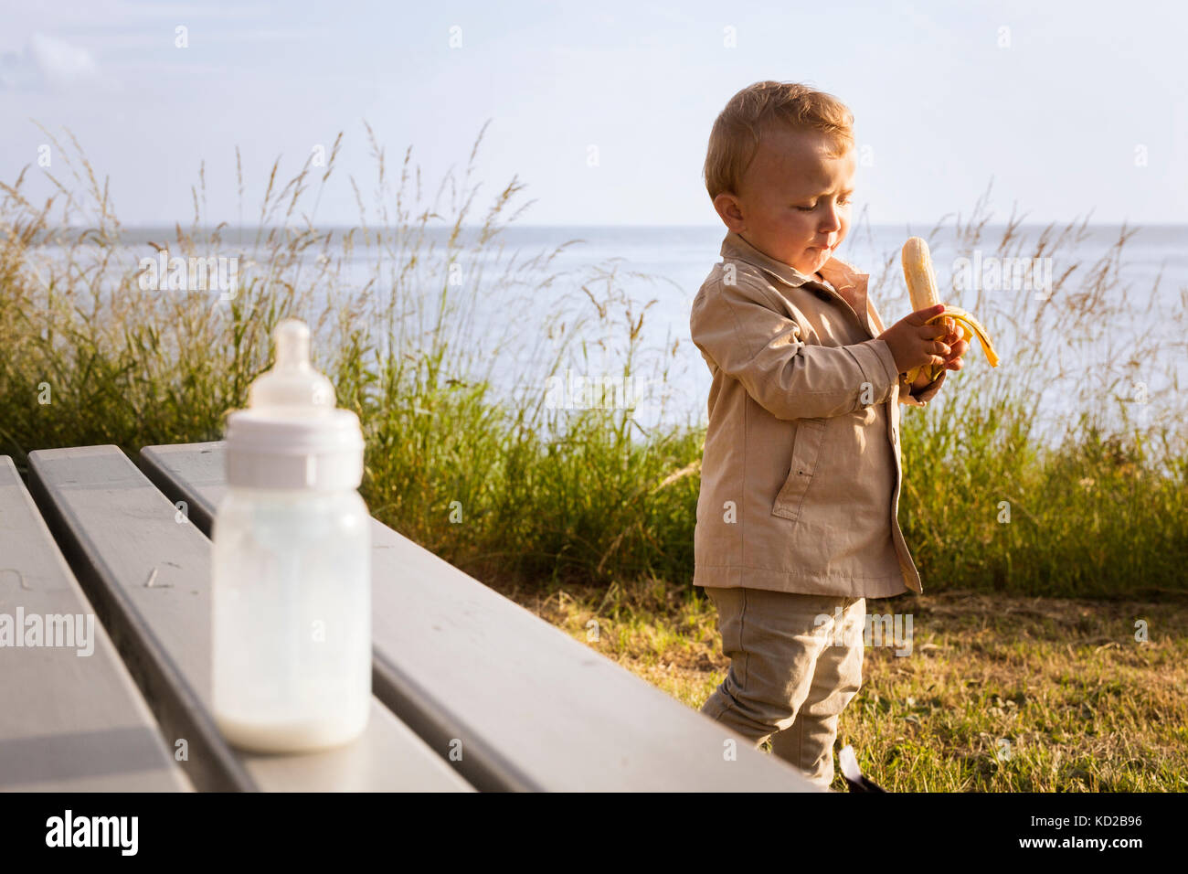 Baby boy (18-23 mesi) azienda banana Foto Stock
