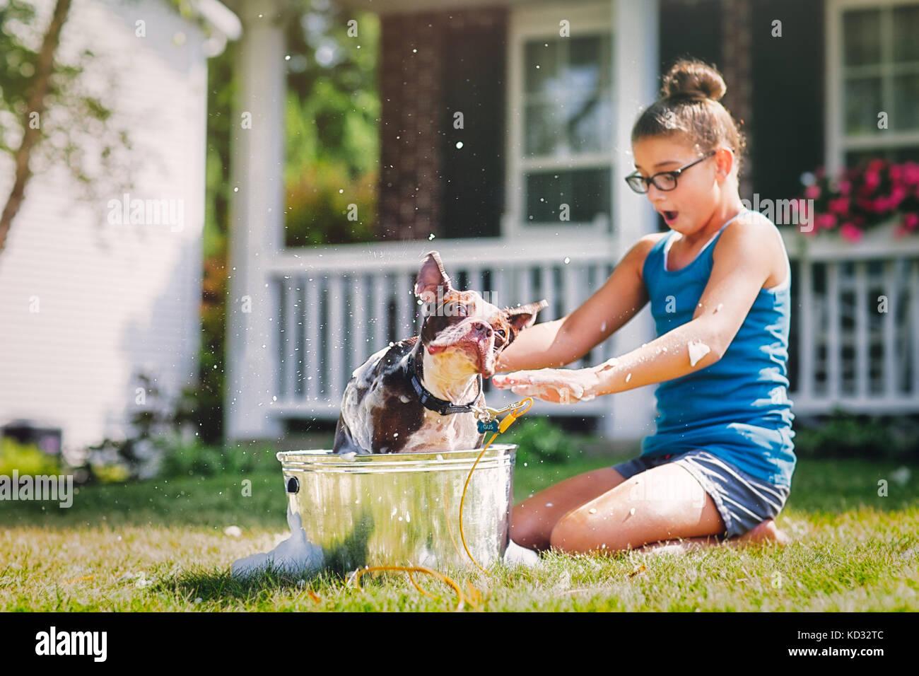 Ragazza cane di lavaggio nella benna Immagini Stock