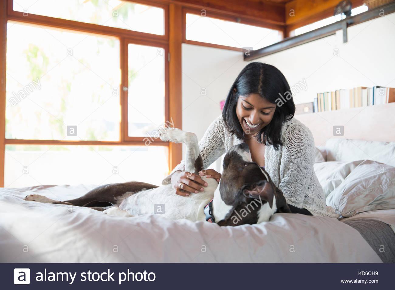 Donna sorridente petting cane sul letto Immagini Stock