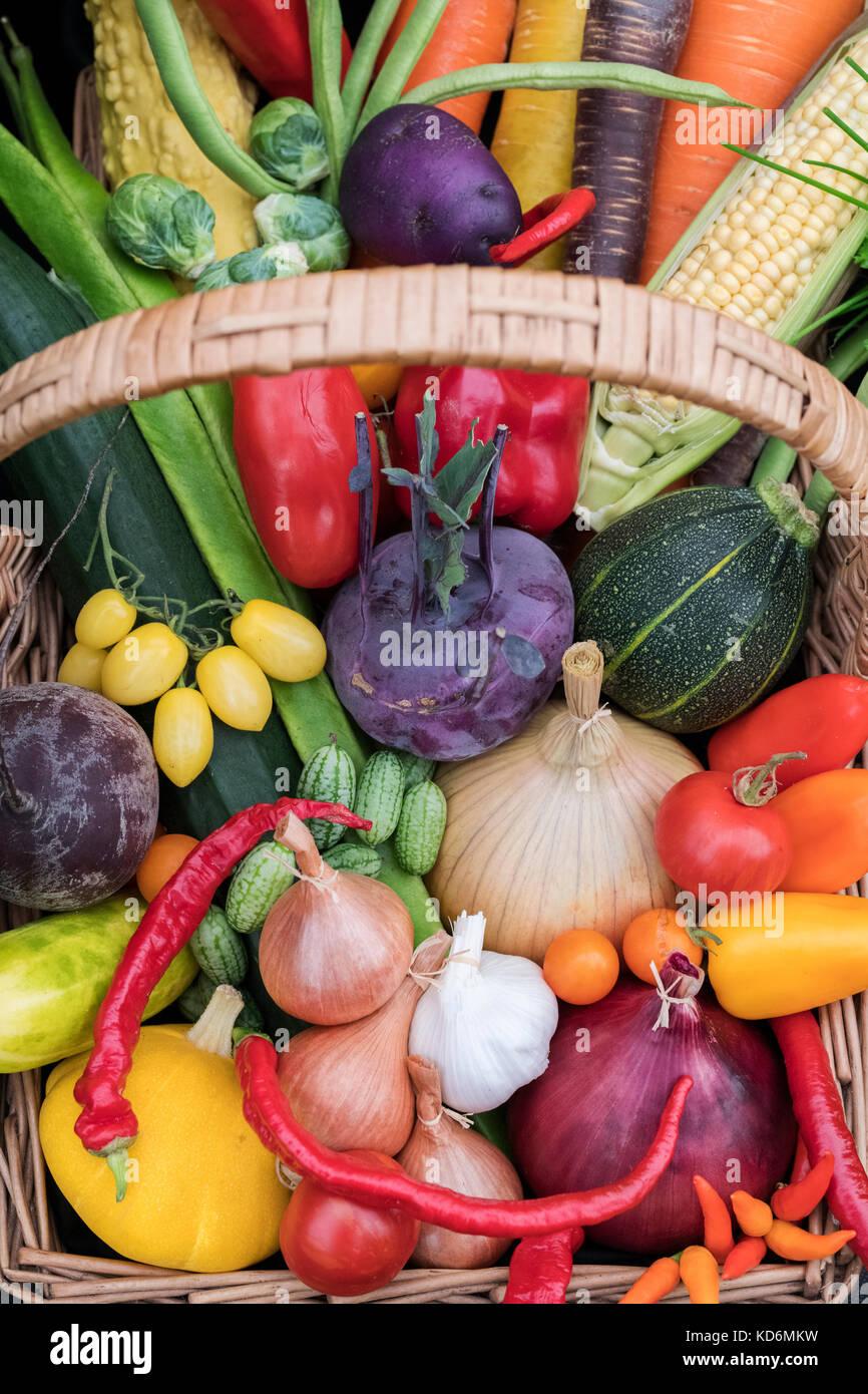 Trug vegetali visualizza a Malvern Autunno Mostra, Worcestershire, Regno Unito Immagini Stock