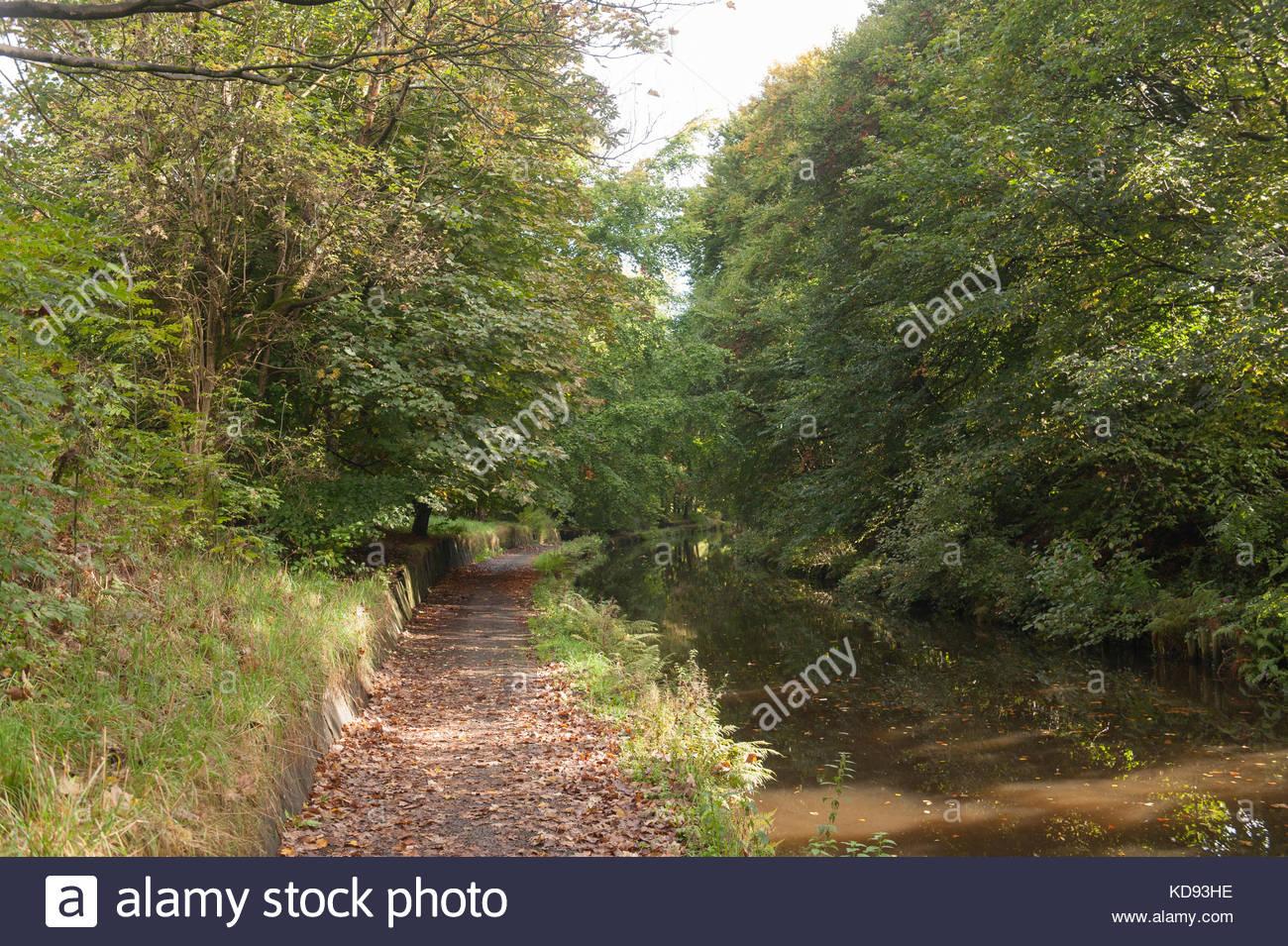 Rochdale England Regno Unito i colori autunnali in Rochdale Canal con ciclo nazionale di instradamento di rete 66 Immagini Stock