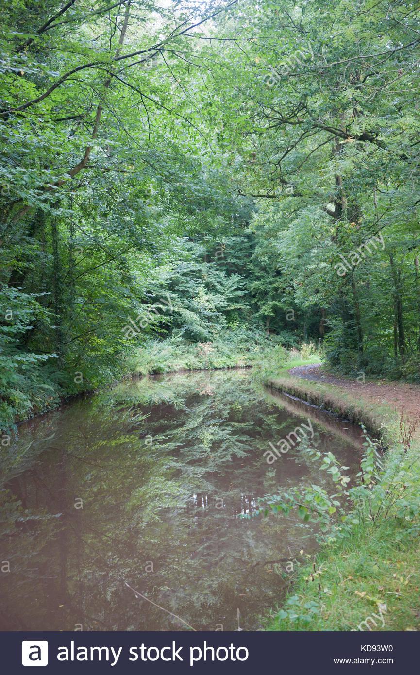 Nr Llangynidr Wales UK i colori autunnali sulla Monmouthshire e Brecon Canal. Immagini Stock
