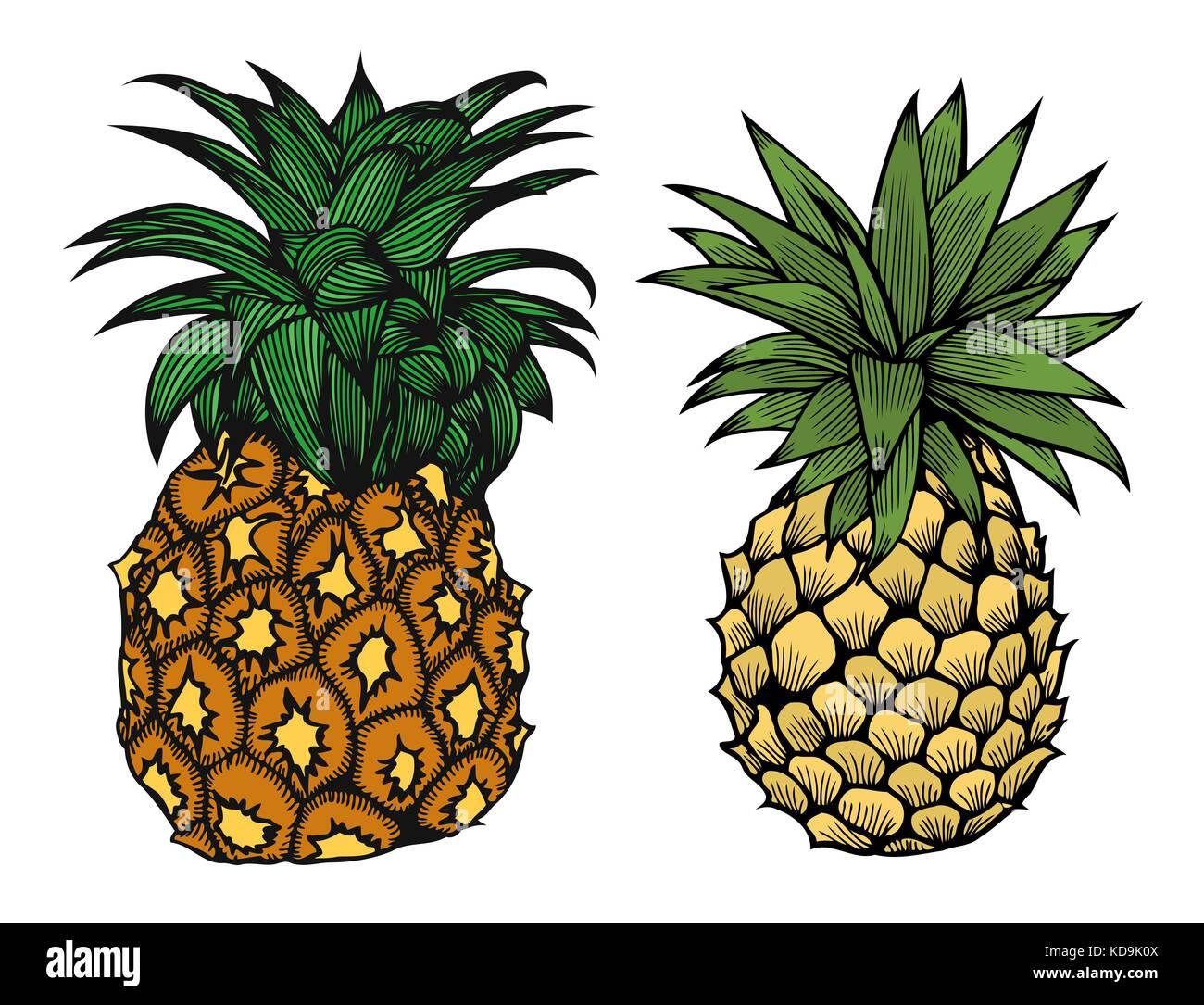 Due Cartoon Ananas Frutta Illustrazione Vettoriale Per Bambini