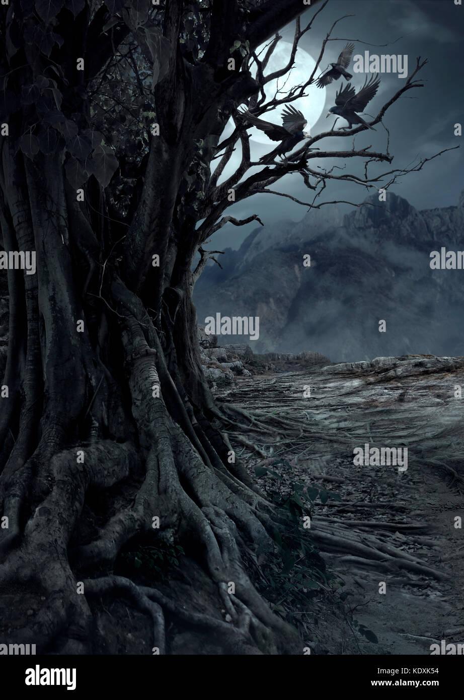 Scary albero morto, la notte nella foresta misteriosa con la luce della luna e tre corvi Immagini Stock