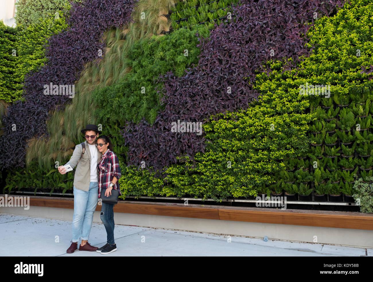 Fabulous il verde muro vivente in paphos citt vecchia for Progettista giardini