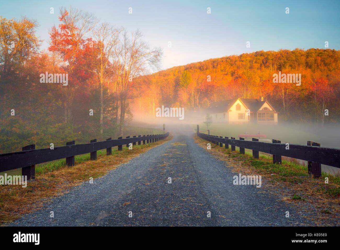 Una lunga, recinto-rivestita lane sfocia in un banco di nebbia con sole incandescente fogliame di autunno in background. Foto Stock